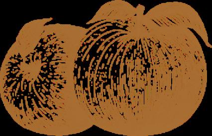 pomme-vintage-fond